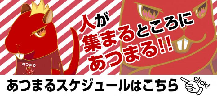 kiji_atsumaru