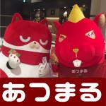 20171201マルハン新宿東宝ビル_171201_0023
