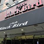 160818-soryu-blackbird_01