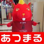 201839メガガイア本山店_180310_0012