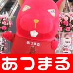 201833 Dステ新小岩店_180305_0037