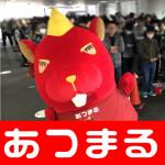 201856 繝舌・繧ク繝ウ蟯。螻ア蜊玲悽蠎誉180506_0005