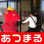 2018514 繧ュ繧ッ繝、遨らゥ榊コ誉180514_0008