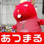 5月28日 ライジング元町店_180528_0043