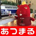 20180630 将軍 田端店_180630_0015